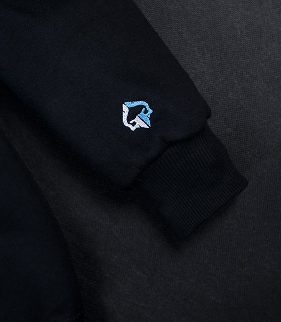 """Hoodie """"Mini Logo"""""""